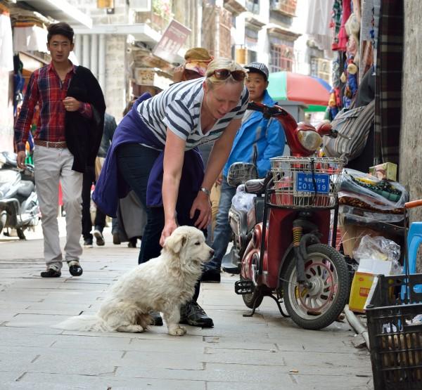 store bryster tibetansk tæppetisser